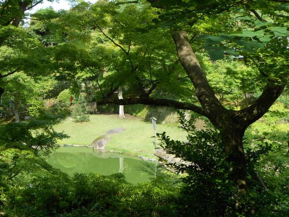 深い緑に囲まれた妙香池