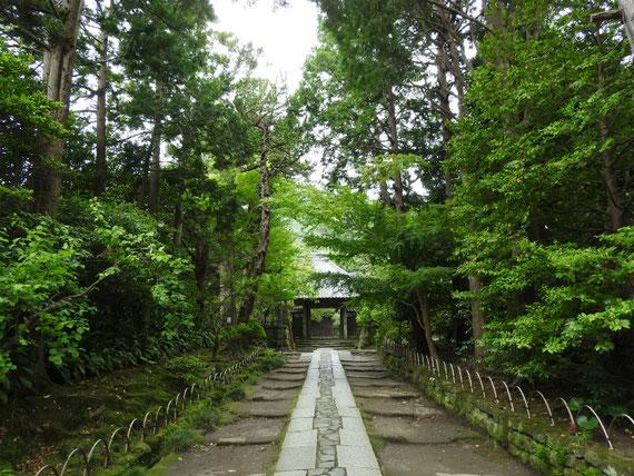 壽福寺 石畳の参道