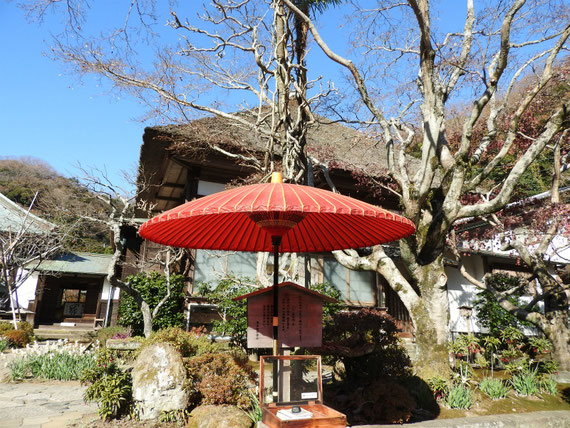 初冬の鎌倉海蔵禅寺