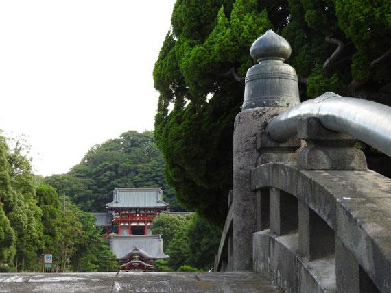 太鼓橋から八幡宮を望む