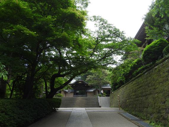 円覚寺 唐門と境内