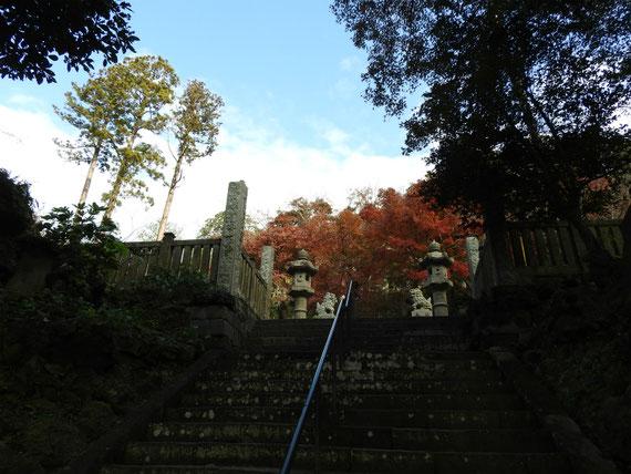 階段途中の、境内の石灯籠