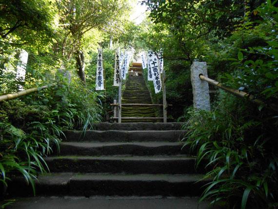 山門をくぐるとさらに観音堂へ続く石段が続きます。苔石段