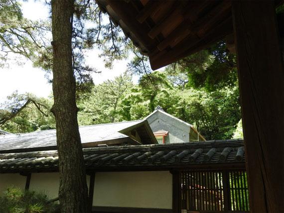 甍越しの白雲邸と倉
