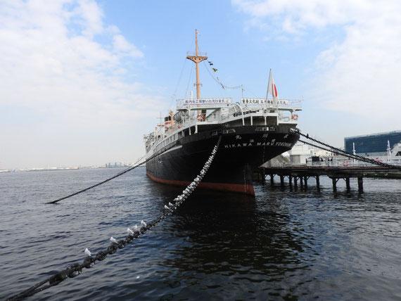 カモメと日本郵船氷川丸