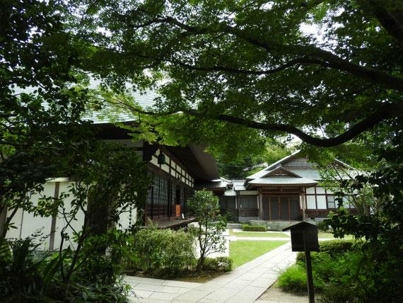 喜泉庵から方丈(本堂)と庫裡を観る