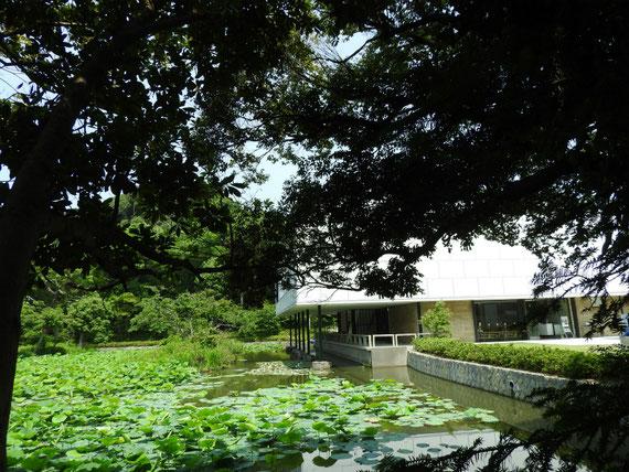 参道から鎌倉文華館を見る