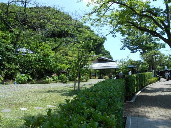 川喜多映画記念館庭園
