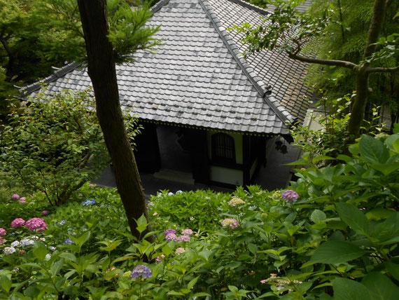 アジサイ散策路高台から。屋根がいいですね