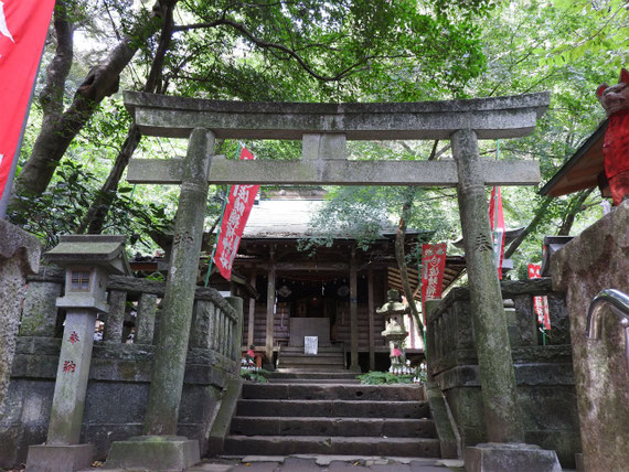 石段を上って、鳥居越しの拝殿