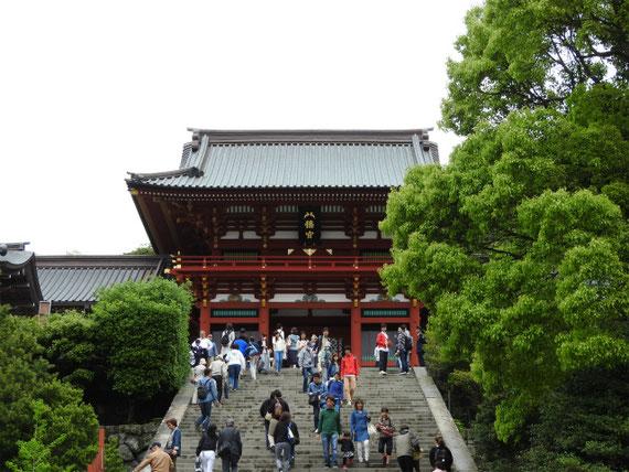 鎌倉八幡宮境内、本宮1828年文政11年造営。