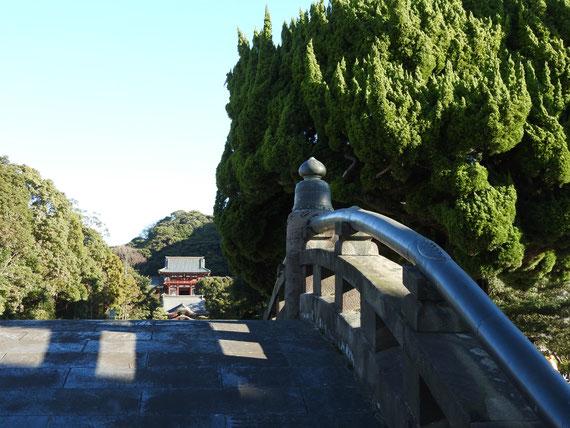 太鼓橋から本宮を望む