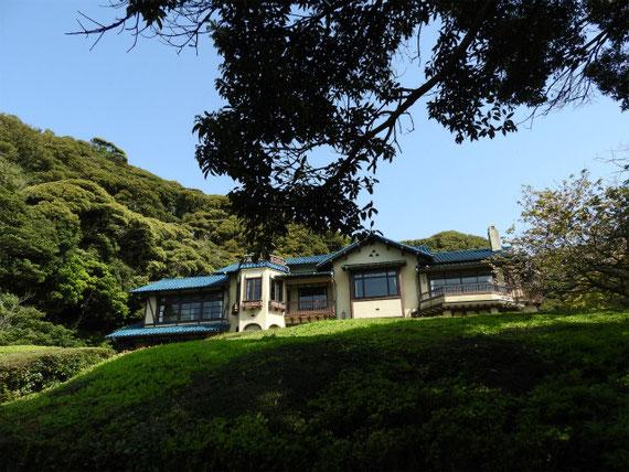 庭園の樹木から望む文学館