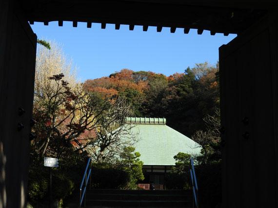 山門より本堂を観る