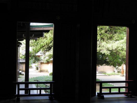 方丈から中庭を見る