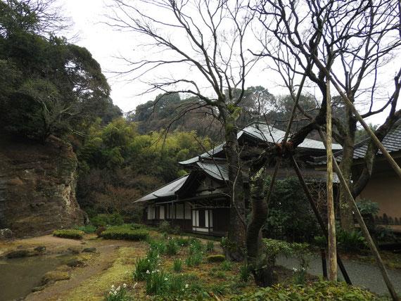 本堂と瑞泉寺庭園