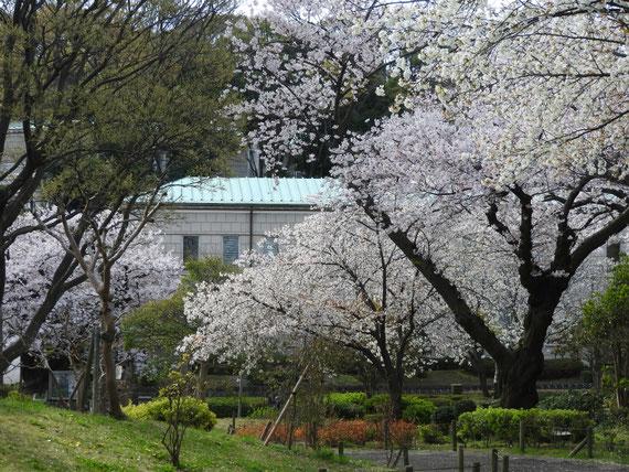 神奈川近代文学館本館 4月