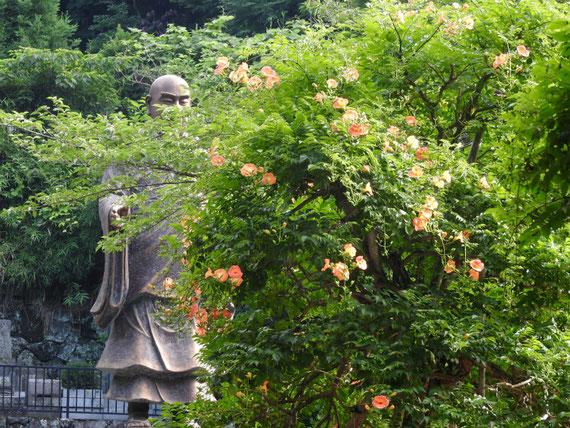 日蓮聖人銅像と凌霄花(のうぜんかずら)