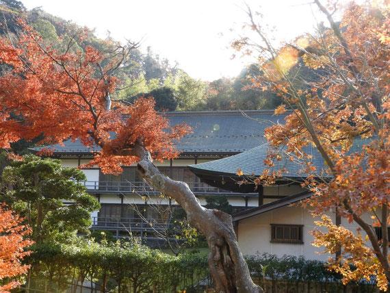 紅葉の得月楼