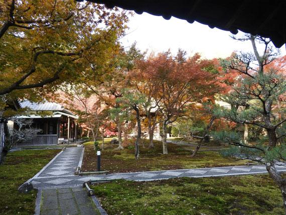 裏門からみる、境内の書院と敷石の参道