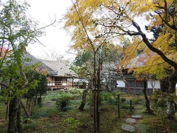 浄智寺書院・客殿と本堂裏の風景