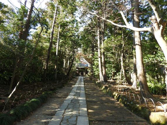 壽福金剛禅寺の参道