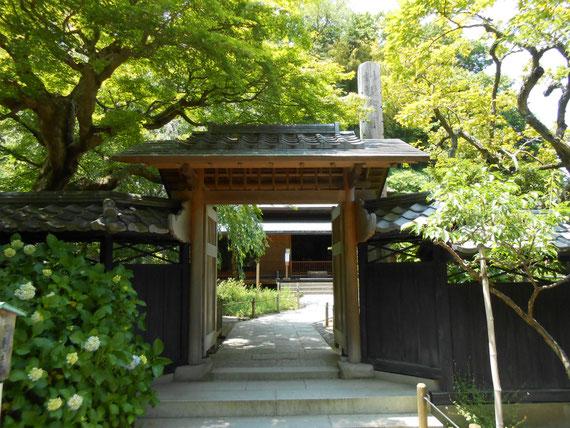 本堂の山門