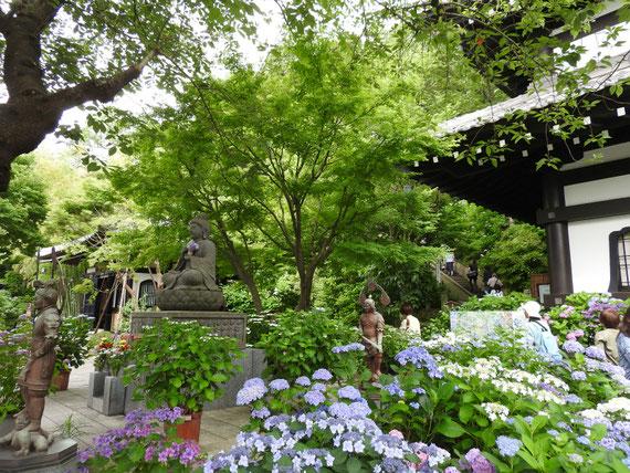 庭園とアジサイロードの入り口