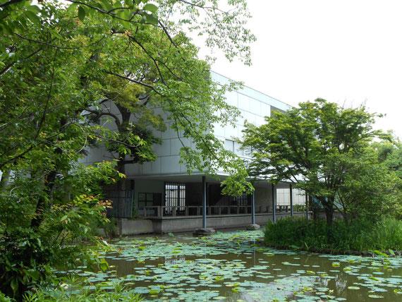 自然と調和する美術館、本館