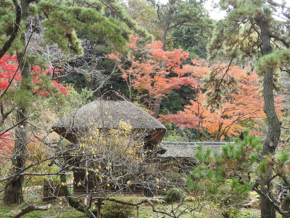 旧矢箆原邸から横笛庵を望む