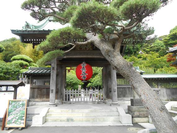 長谷寺山門