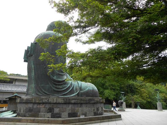 銅造阿弥陀如来像の裏手から。 このアングルの大仏様は想像以上に素晴らしいです。