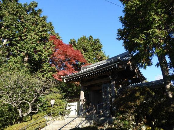 紅葉の浄妙寺山門