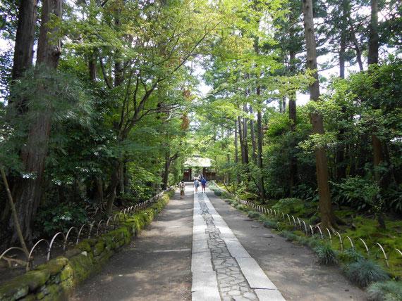 山門への参道石畳、向こうから来るのは外人さんのカップルでした