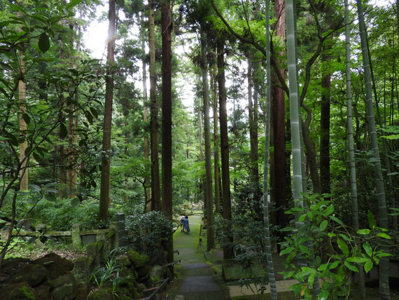 墓苑からの参道