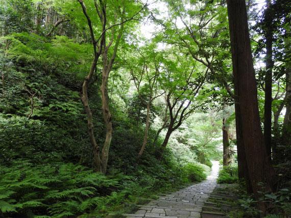 山門への石畳