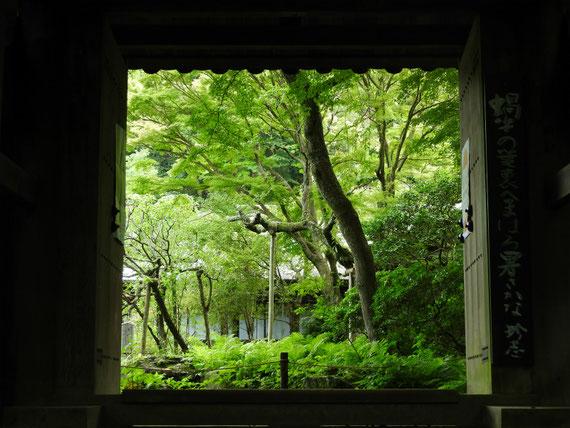 瑞泉寺山門から庭園をみる 7月