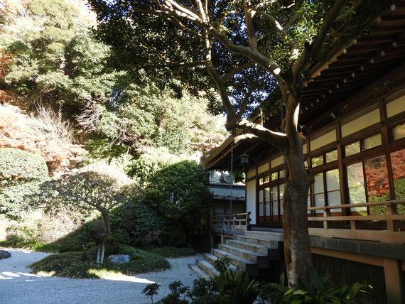 本堂裏の庭園