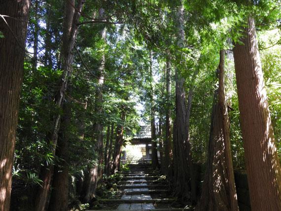 暗い石の階段をのぼると、正統院の山門です