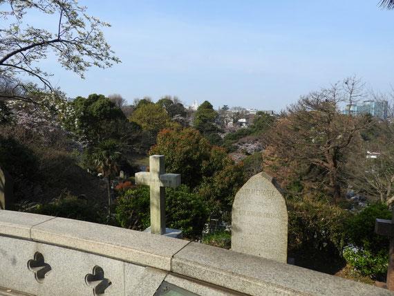 横浜外国人墓地資料館からの展望