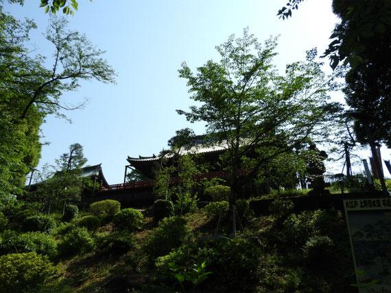 不忍池から清水観音堂を見上げる