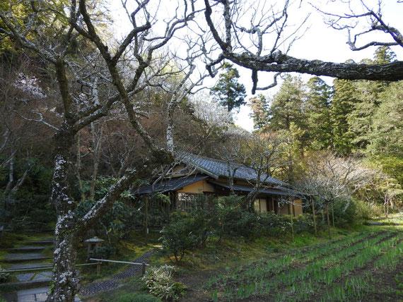 白蓮舎と前庭園