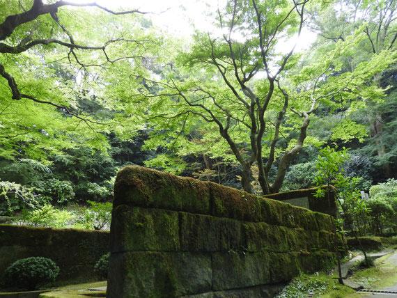 東慶寺 墓苑