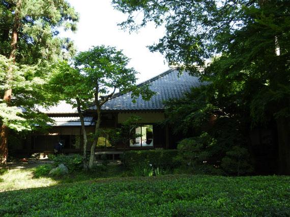 本堂裏の池庭園