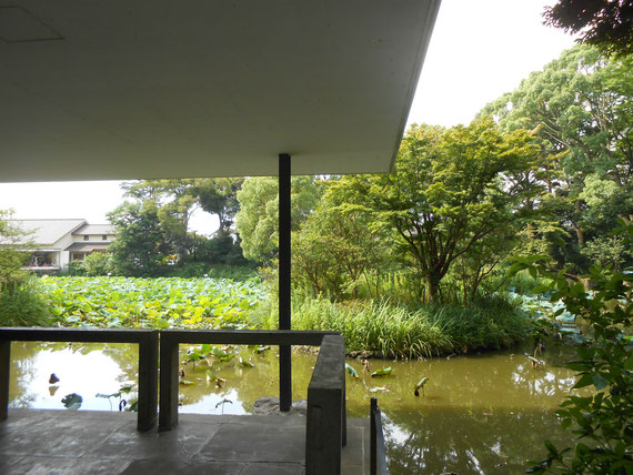 神奈川県立近代美術館 鎌倉館、野外展示室から平家池