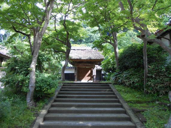 修行者の専門道場「居士林」各種座禅会が催される