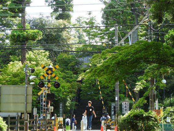 円覚寺 白鷺池から円覚寺総門をみる