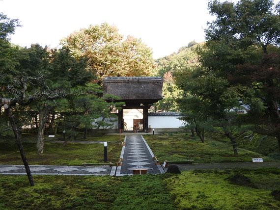 本堂から観た山門と敷石