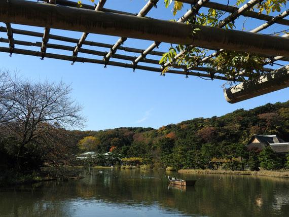 藤棚より大池を観る