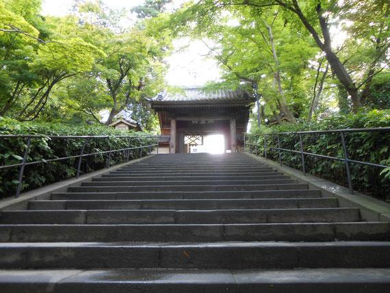 総門、山号「瑞鹿山」。 開門の朝8時の石階段